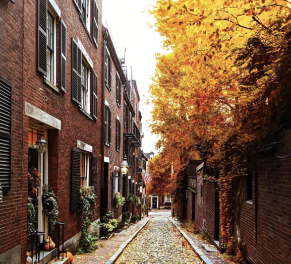 Picture of Acorn Street Boston Massachusetts in the fall with lots of beautiful foliage. The street has old brick homes and a cobblestone path.